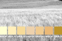 YOLO Colorhouse GRAIN color family / YOLO Colorhouse GRAIN color family notes: • warm golden tones • versatile and neutral • light and buttery to rich and vigorous • transitional spaces • harmonize with CLAY, WATER and LEAF color families / by Colorhouse Paint