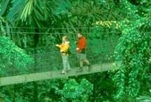 Costa Rica & Panama / by Lindblad Expeditions