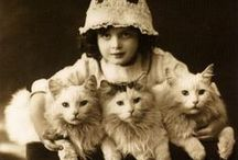 Vintage Cats / Love the impact of cats on our society over the years. People. Products. Everything.