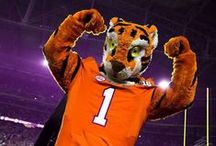 Clemson Tigers / by Kimberly Ankerich