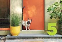 curb appeal / by Isabella Geddes