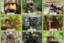 Tree houses / by Wine Country Woman