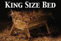 Christmas Nativity / by Debi Hamilton