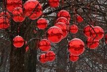Christmas Yard / by Debi Hamilton