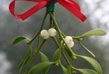 Christmas Traditions / by Debi Hamilton
