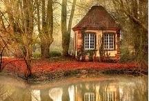 Cottage Lane / by Debi Hamilton