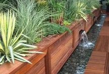 Landscaping & Gardens / Landscaping and outdoor garden ideas for your new home including DIY garden projects and plants