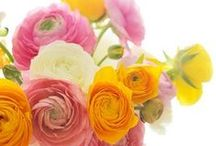 PARTY: Spring Fling / Crafts, printables, recipes, and party decor for an EXTRAORDINARY Spring Fling party!