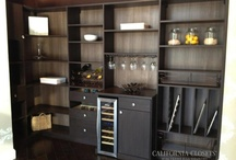 Tour Our Showrooms! / Take a virtual tour through our Austin and San Antonio Showrooms. Beautiful systems and exquisite detail! / by California Closets of the Texas Hill Country