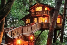 Treehouse Spectaculars