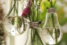 Great Ideas / by Cindy Freeland