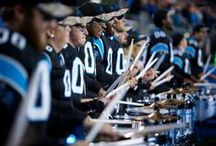 Purrcussion Drum Line / The smoothest band in all the land! / by Carolina Panthers