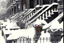 Winter Wonders / Winter snow, scenery, animal, ideas