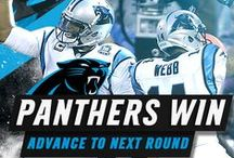 2014 | Season Recap / 2014 Season Highlights / by Carolina Panthers