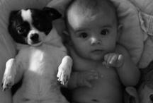 Everybody's best friend! / by Tiffany Cash