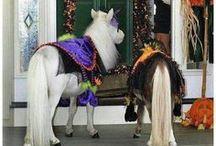 Horsey Halloween / Great Halloween costumes for your horse