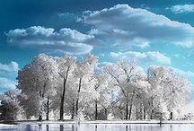 Hiver enchanteur / Un hiver enchanteur vêtu de blanc. Un nature givrée. Des paysages endormis.