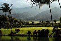 Hawaii / photos Hawaii / by Azell Jacobson