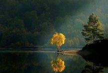 Reference: Landscapes & Nature