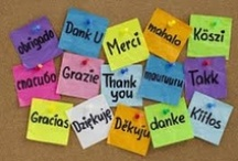 THANK YOU to our volunteers / This week (1st - 7th June 2013) is National Volunteers Week and as a thank you to all of our volunteers (past, present and future) we have created this board especially for you. We couldn't do any of it without you, so thank you one and all!