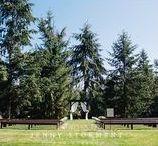 Trinity Tree Farm / The Lodge at Trinity Tree Farm
