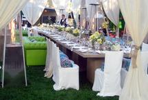 Party & Wedding ideas  / by Lori Williams