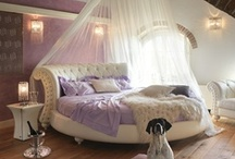 Dream Room / by Miranda Donnelly