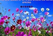 Spring Hop!