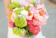 Wedding Bouquets / by Cherryblossoms and Faeriewings