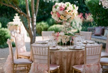 Wedding Reception Set-up & Details / by Cherryblossoms and Faeriewings