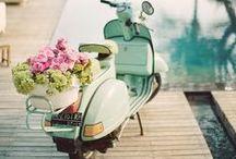 Wedding Transports
