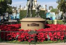 Disney! / Tips, tricks and secrets to your perfect Walt Disney World vacation.