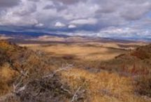 AH, IDAHO ~ the Gem State / PLACES AND PEOPLE IN IDAHO / by Liz Herceg-KELLY
