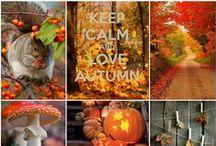 Seasons- autumn