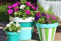 Crafty! Cute Clay Pots / by Tina Chase