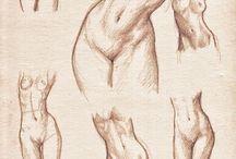 Body   Drawing Tutorial