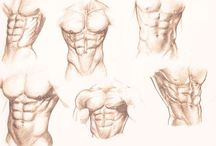 Muscles   Drawing Tutorial