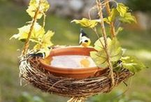 GARDEN IDEAS & PROJECTS / Gardening, garden projects, garden ideas