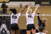 Purdue Volleyball / by Purdue Athletics
