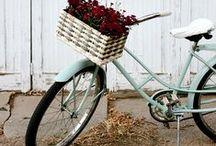 les bicyclettes / by Vicki Archer