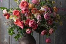 Floral arrangements / Floral inspiration