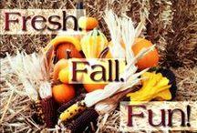 Fall Fun / Everything Fall and Everything Fun!