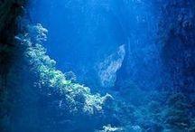 Places I'd Like to Go / by Ellen De Lenclos
