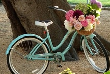 Bicycles / by Lisa Wildes