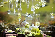 Tablescapes / by Lisa Wildes