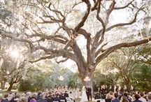 November 7, 2015 Wedding / Wedding Ideas and pictures that inspire my creativity / by Angel Chambers