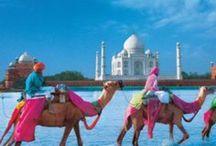 Jaipur bound / by Ellen De Lenclos
