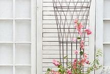 Garden / tiny patio escape + larger inspirations, indoor and outdoor.