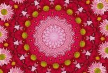 Mandala OM Aum amen / Collection of mandalas  / by Robin Elise Ruiz