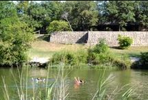 Hill Country Family Travel Spots